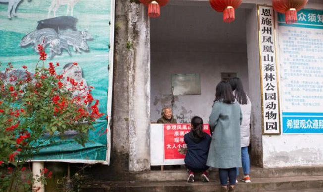 遊客在動物園前買票入園。(取材自微信)