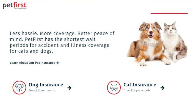 寵物保險市場欣欣向榮。(PetFirst)