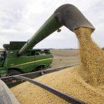 中國承諾再購買1000萬噸美國大豆