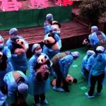 大熊貓寶寶集體登場 上演史上最混亂拜年現場