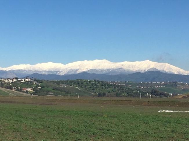從核桃市看到聖蓋博谷連綿雪山。(記者楊青/攝影)