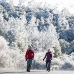 西雅圖周末最大暴風雪來襲   金山灣區再迎白色世界