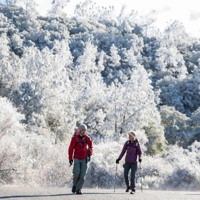 本周二(5日),灣區罕見地下雪,圖為兩名灣區居民,趕著下雪,到東灣戴亞布洛山上,欣賞白色世界。(電視新聞截圖)