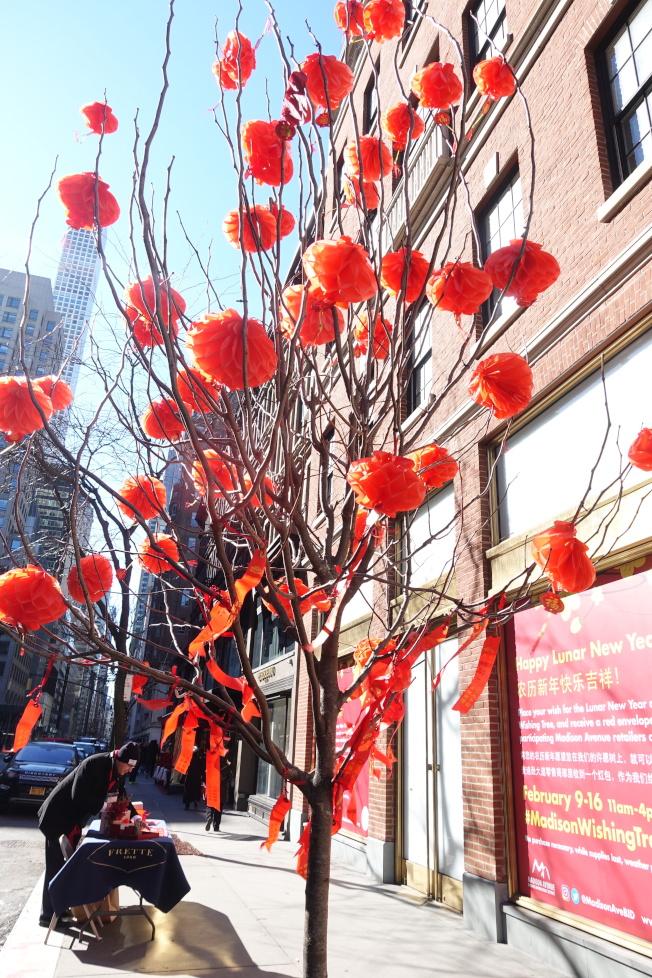 紅色許願樹在位於62街與63街間的麥迪遜大道上。(記者金春香/攝影)