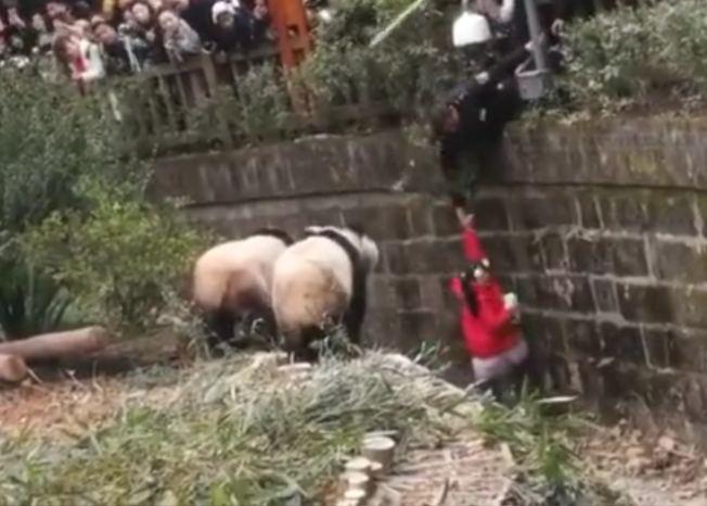基地工作人員將女童救出。(視頻截圖)