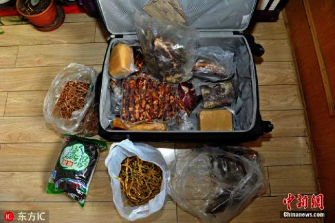 春節長假終於結束,大陸不少網友這兩天紛紛在網路上「曬」出自己的後車廂、行李箱到底都被父母塞了些什麼東西。(中新網)