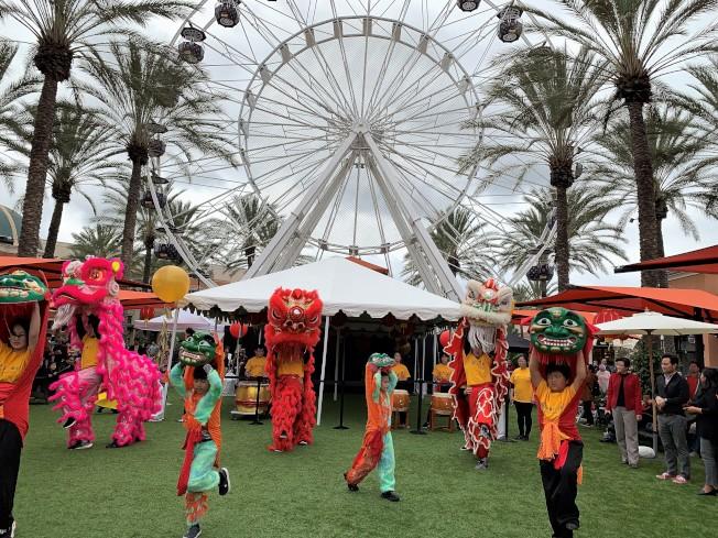 南海岸中華文化協會的瑞獅隊首度參加爾灣光譜購物中心農曆新年慶祝活動演出。(記者蕭迪玉/攝影)
