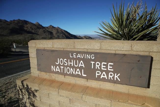 參院12日通過十年來最嚴格的土地保育法,保護西部至少130萬英畝土地,其中也包括擴大加州約書亞樹國家公園的範圍。(美聯社)