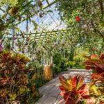 紐約市植物園蘭花展周六登場 重現星國熱帶風情