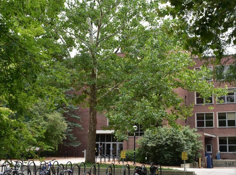 安娜堡密西根大學16日下午向全校師生發出「校園有槍手」的緊急通知,呼籲師生盡快離開梅森教學大樓(Mason Hall,見圖)。(取自谷歌地圖)