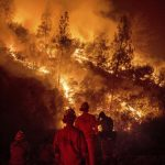 加州野火元凶 太平洋瓦斯電力公司賠10億