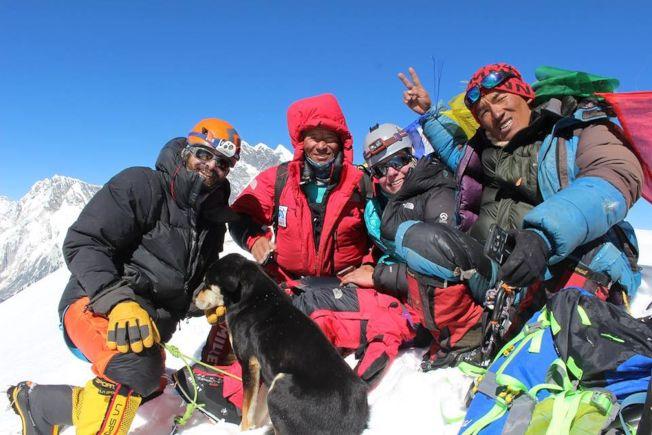 流浪犬「梅拉」與登山隊一起成功登頂。(取材自臉書)
