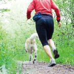 高強度偶發活動促進心血管健康