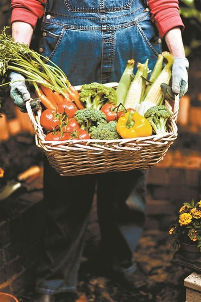健康飲食正熱門,但如沒有正確觀念,反而會有反效果。(取材自廣州日報/CFP圖)