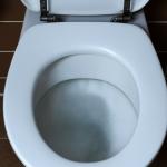 嫌馬桶墊髒,鋪衛生紙再坐? 專家說:不