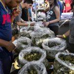 大仁說財經/非正式統計,大麻業職缺全美成長最快,去年成長44%