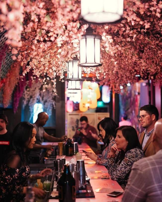 華府「快閃」櫻花酒吧即日起至4月21日開放。(櫻花酒吧臉書)