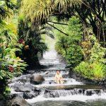 新天地旅遊 巴拿馬、哥斯達黎加遊