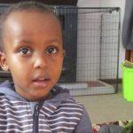 最小遇害者才3歲父兄慌亂奔逃…弟弟不見了