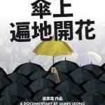 周永康:其實香港人是很悲哀的