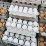 吃蛋新論戰 「一周吃3~4顆蛋 增心臟病風險」