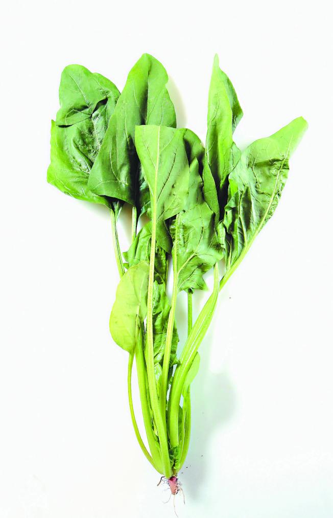 營養師說,菠菜不能與豆腐一起吃,純屬謠言。(本報資料照片)