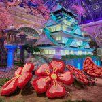 來美麗湖花園 看大阪春之美
