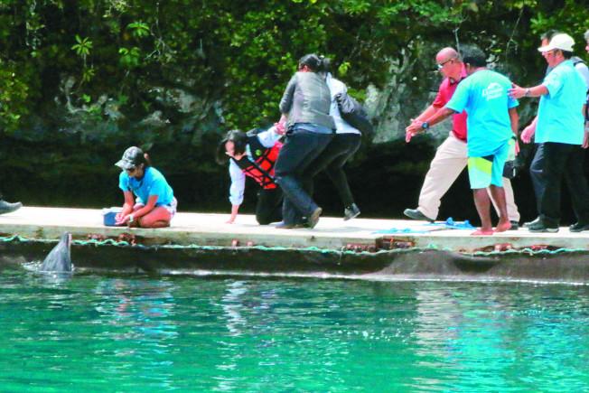 蔡英文總統(左二)展開「海洋民主之旅」訪問太平洋友邦帛琉,23日前往海豚灣參觀海豚保育成果,行走時不慎跌倒,所幸沒有大礙。(中央社)