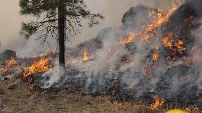 隨著南加雨季逐漸結束,旱季野火危險增加,消防單位在內陸開始演練預防野火,及早準備防患未然。(聯邦林務局)