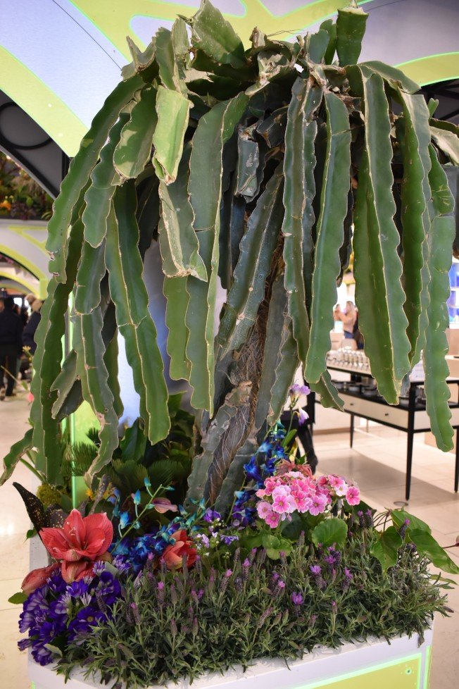 花展中運用大量的多肉植物,打造出夢幻的外星球。(記者顏嘉瑩/攝影)