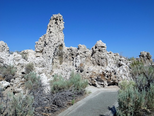 「莫諾湖」的水面不如往昔的全盛時期,有很多石灰華已完全暴露在湖岸上風化了。
