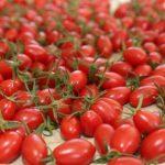 油炒後才好吸收? 番茄生吃還是熟煮好?