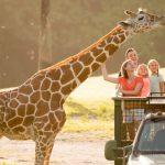 全美最佳30所動物園 佛州占四