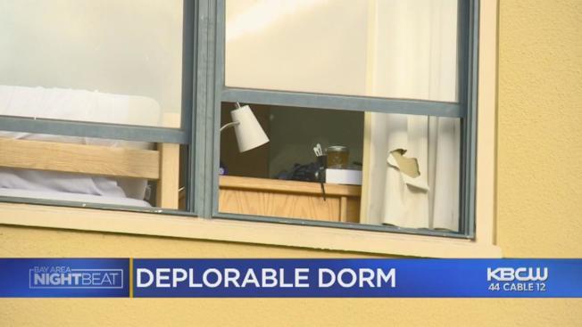 柏克萊加大宿舍史德恩大樓被爆居住條件惡劣,學生們忍無可忍。(電視新聞截圖)
