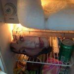 冰箱裡驚見「女人微笑臉龐」 網友嚇:別這樣包食物!