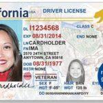 加州已領全真駕照340萬人須補交證件