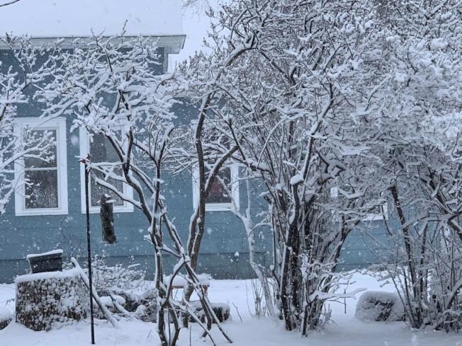 明州西南部連續兩天風雪。(周東發提供)
