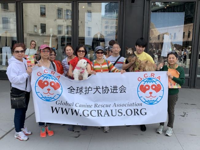 黃維(右三)表示,希望能夠改變西方對亞洲人吃狗肉的惡劣印象。(記者和釗宇/攝影)