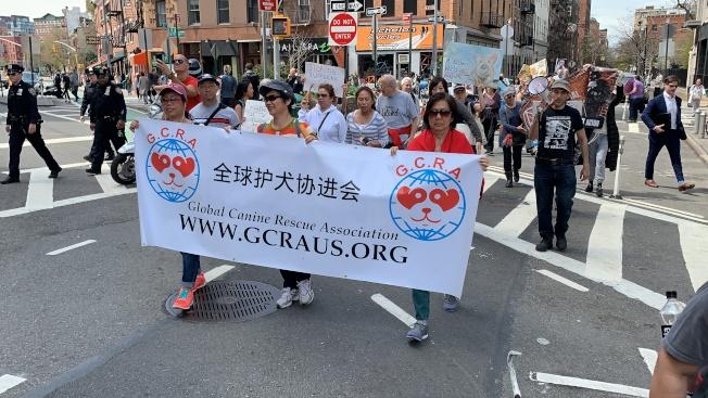 第12屆「以素食為榮大遊行」14日在曼哈頓中城舉行,傳達素食的健康環保理念。(記者和釗宇/攝影)