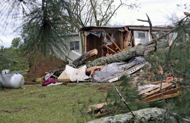 密西西比州漢米爾頓一棵大樹被吹倒,撞毀房屋。(美聯社)