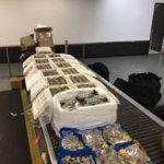 華人私帶800磅海鮮闖關  貨遭銷毀  人收傳票