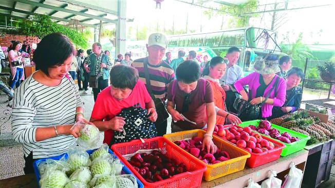 今年3月起陸客團增加,中午在餐廳用餐後,團員最愛採買台灣水果。(記者卜敏正/攝影)