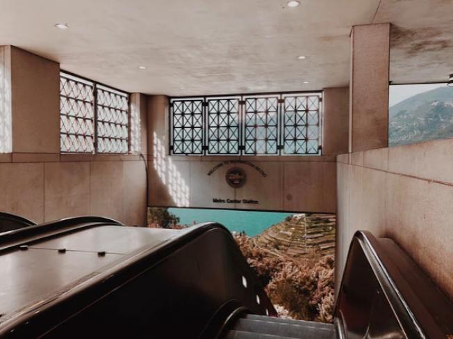 24歲的艾莉森‧弗里德爾把華府地鐵與義大利五漁村的美景相連。(弗里德爾網站)