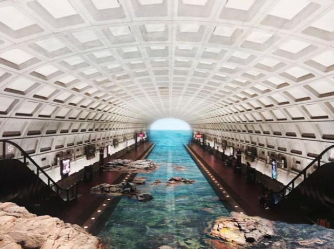 通過Photoshop把地鐵站的照片和此前到各地旅遊拍的風景照進行二次創作,弗里德爾的作品讓華府地鐵通過巴塞隆納的卡萊利亞海灘。(弗里德爾網站)