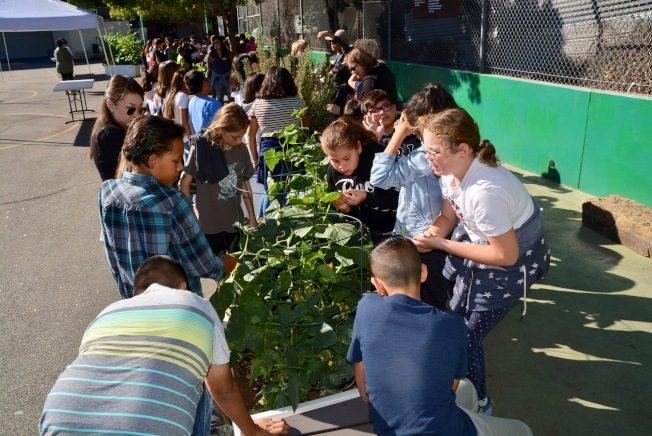 綠色餐飲進校園 水果蔬菜保健康