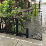 貝瑞吉、戴克高地 將建雨水花園
