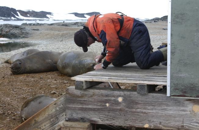 英國南極研究學者盧內斯(John Loines)檢修破損的木階梯。(路透)