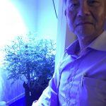 有機菜博士徐仕林 瞄準大麻產業