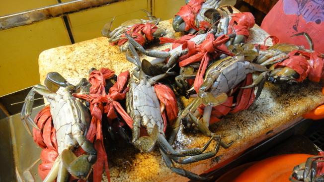 季節轉換時,容易過敏的人應少吃蝦蟹之類的「發物」。(本報資料照片)