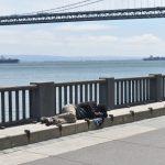 舊金山成年遊民數 突破8000人